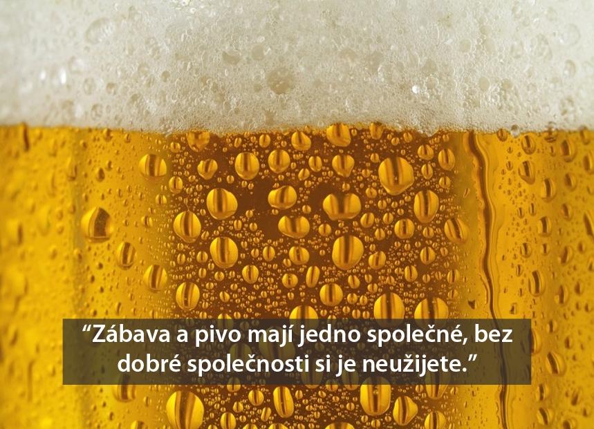 ples - pivo final